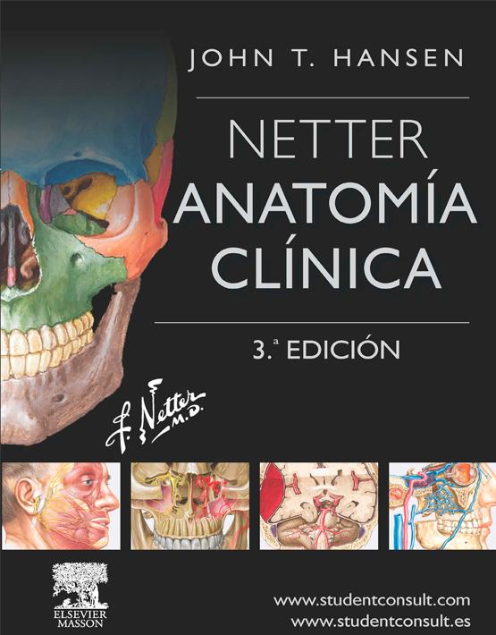 Netter Anatomía clínica
