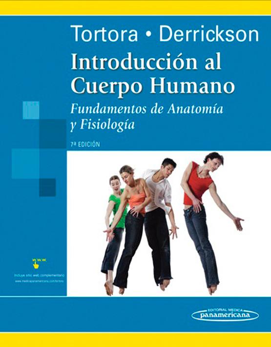 Introducción del cuerpo humano.